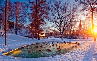 Достопримечательности Хельсинки зимой