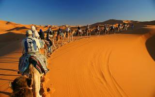 Развлечения в марокко
