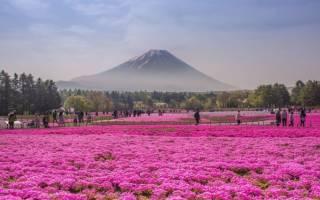 Самые интересные места в японии